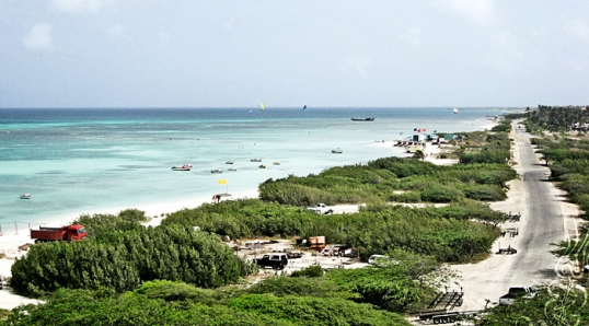 Aruba – April 2007 © Bryan Crabtree