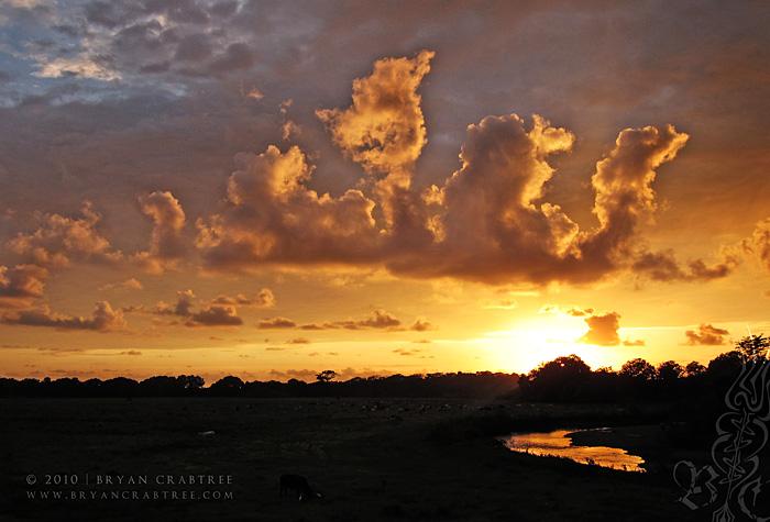 Costa Rica © Bryan Crabtree